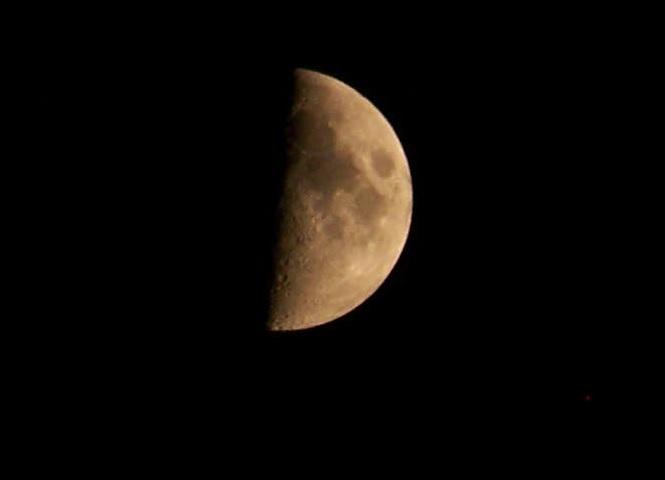 Permaculture comment la pratiquer - Jardiner avec la lune ...