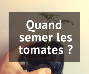 Date semis tomates 2021